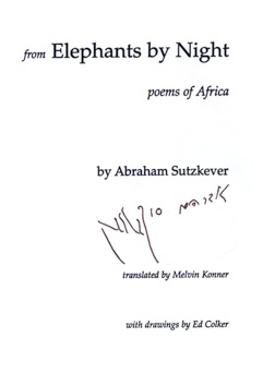 Elephants By Night Cover